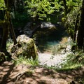 The trail down to the lower and larger pool.- Sharps Creek Recreation Area Swimming Hole