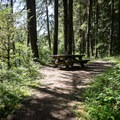 A picnic table near the parking area.- Sharps Creek Recreation Area Swimming Hole