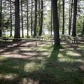 Picnic tables in Baker Bay.- Baker Bay Park, Dorena Reservoir