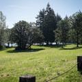 The day use area in Baker Bay.- Baker Bay Park, Dorena Reservoir