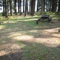 Typical site at Baker Bay Campground.- Baker Bay Campground, Dorena Reservoir