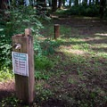 Potable water at Baker Bay Campground.- Baker Bay Campground, Dorena Reservoir
