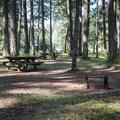 Typical site.- Baker Bay Campground, Dorena Reservoir