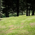 Shortridge Park.- Shortridge Park, Cottage Grove Lake