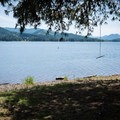 A rope swing hints at higher water levels.- Lakeside Park, Cottage Grove Lake