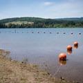 The designated swimming area in Wilson Creek Park.- Wilson Creek Park, Cottage Grove Lake