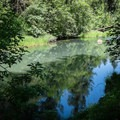 The Coast Fork Willamette River leaves the reservoir.- Riverside Park, Cottage Grove Lake