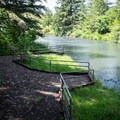 The fishing and swimming area just upstream from the parking area.- Riverside Park, Cottage Grove Lake