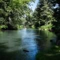 Coast Fork Willamette River from Riverside Park.- Riverside Park, Cottage Grove Lake