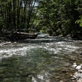 The view downstream from the falls.- Salmon Creek Falls Swimming Holes