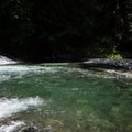A small pool below the falls. Strong currents here may be dangerous for swimmers.- Salmon Creek Falls Swimming Holes