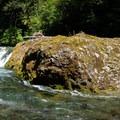 Salmon Creek Falls.- Salmon Creek Falls Swimming Holes