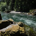 The swimming hole at 1.4 miles from the Westfir covered bridge.- North Fork Middle Fork Willamette Swimming Hole 1.4