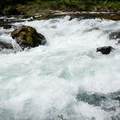 The rapid just above the hole has some powerful currents.- North Fork Middle Fork Willamette Swimming Hole 1.4