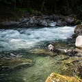 Strong Currents above the pool.- North Fork Middle Fork Willamette Swimming Hole 5.5