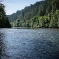 Looking upstream at the McKenzie River from Hendricks Bridge Park.- Hendricks Bridge Park