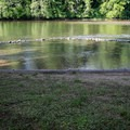 The designated swimming area at Hendricks Bridge Park.- Hendricks Bridge Park