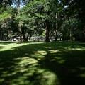 Hendricks Bridge Park.- Hendricks Bridge Park