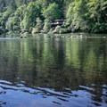 The McKenzie River.- Hendricks Bridge Park