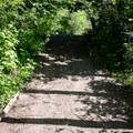 The path down to the McKenzie is large enough for a four-wheel drive vehicle.- Camp Creek Road Waterworks Swimming Hole