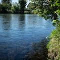 McKenzie River.- Camp Creek Road Waterworks Swimming Hole
