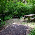 A typical individual picnic site in Shotgun Creek Recreation Area.- Shotgun Creek Recreation Area