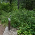 Potable water is available.- Whitetail Campground