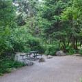 Whitetail Campground.- Whitetail Campground