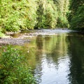 Shallower water for younger swimmers on the Molalla River.- Day Use Site 2: Molalla River Swimming