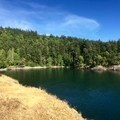 Smallpox Bay from the short bluff walking path.- San Juan County Day Park + Campground
