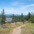 A view of downtown Coeur d'Alene from Tubbs Hill's Summit Trail.- Tubbs Hill Hiking Trails