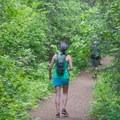 The Highpoint Trail starts through dense brush.- Highpoint Trail