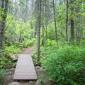 From the sign, the trail steepens and gets rocky.- Highpoint Trail