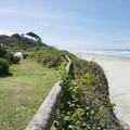Beachside campsite at Tillicum Beach Campground.- Tillicum Beach Campground
