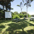 Amphitheater and picnic area at Beachside State Recreation Site Campground.- Beachside State Recreation Site Campground
