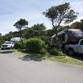 Beachside State Recreation Site Campground.- Beachside State Recreation Site Campground