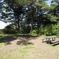 Campsite at Beachside State Recreation Site Campground.- Beachside State Recreation Site Campground