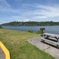 Day use picnic area at Alsea Bay Marina.- Alsea Bay Marina + Robinson Park