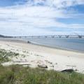 View of the Alsea Bay Bridge from Robinson Park.- Alsea Bay Marina + Robinson Park