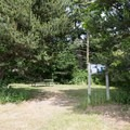Some picnic areas are more private and shaded.- Bowman Bay
