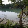 Looking down on Lottie Bay from the trail.- Lottie Bay