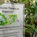 Informative displays enhance the tropical experience.- Conservatory of Flowers