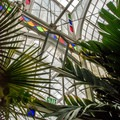 Detail of metal framing and stained glass.- Conservatory of Flowers