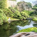 Beautiful pools and landscaping.- Japanese Tea Garden
