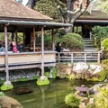 The tea house serves traditional snacks and drinks.- Japanese Tea Garden