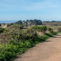 The start of Año Nuevo Trail.- Año Nuevo Point Trail