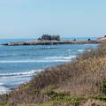 Ruins of the old light station can be seen on the island.- Año Nuevo Point Trail