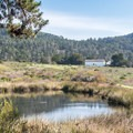 Small pond along the trail.- Año Nuevo Point Trail