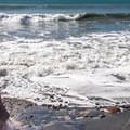 Steps down to Cove Beach.- Cove Beach