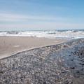 Cove Beach.- Cove Beach